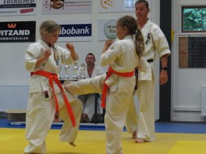 2015 vierkamp karate 444